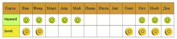 aktinidia_calendar_new-ru