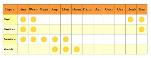 orange_calendar_new-ru
