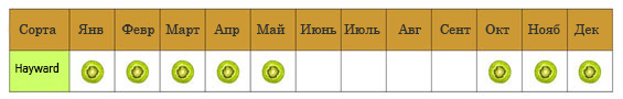 hayward_calendar-ru
